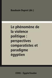 Dimensions sociales de la violence politique
