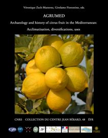 Quantitative evaluation of modern Citrus seed shape and comparison with archaeological remains discovered in Pompeii and Rome