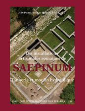 Les installations artisanales romaines de Saepinum