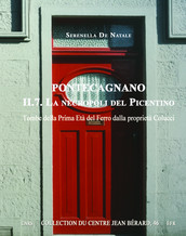Pontecagnano II.7. La necropoli del Picentino
