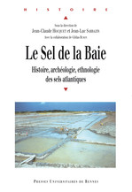 Horizons marins, itinéraires spirituels (Ve-XVIIIe siècles). Volume II.