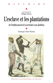 L'esclave et les plantations