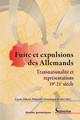 Voyages sur les traces des ancêtres dans des romans sur la Fuite et l'Expulsion des années 2000