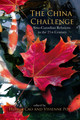 Chapter 17. Causes and Consequences: Overeducated Chinese Immigrants in the Canadian Labour Market